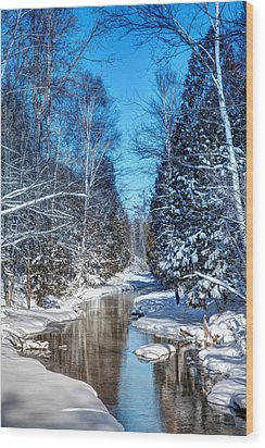 Winter Perfection Wood Print by Gary Gish