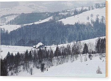 Winter Picture I Wood Print by Nedelcu Valeriu