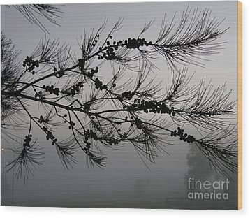 Winter Pine Branch Wood Print by Bev Conover