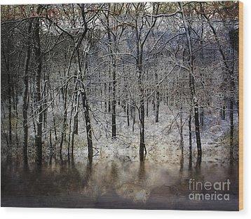 Winter Pond Wood Print