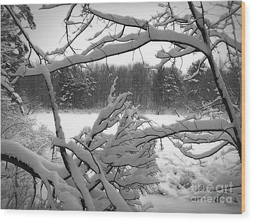 Winter Pond Wood Print by Kathi Mirto