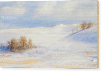 Winter Poplars Wood Print by Theresa Tahara