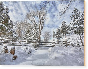 Winter Radiance Wood Print