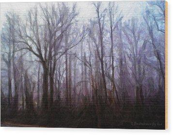 Winter Rain Wood Print by Melody McBride