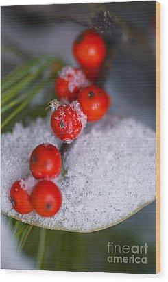 Winter Red Berries Wood Print by Birgit Tyrrell