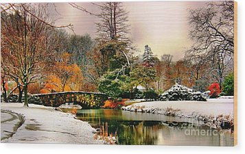 Winter Reflection Wood Print by Judy Palkimas