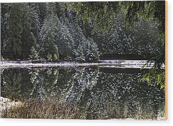 Winter Reflection Wood Print by Timothy Latta