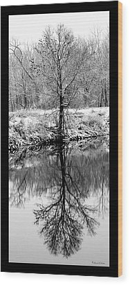 Winter Reflections 3 Wood Print