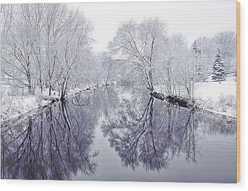 Winter Reflections Wood Print by Andrew Soundarajan