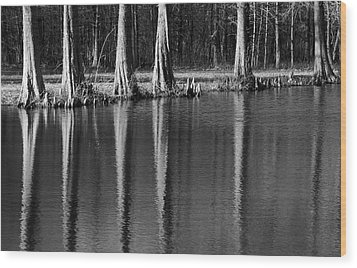 Winter Reflections - Cypress Tree Art Print Wood Print