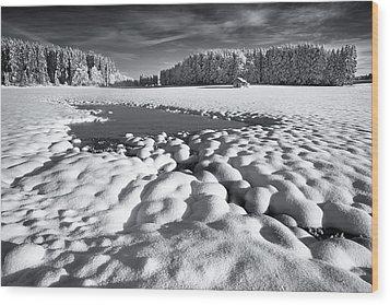 Winter Retreat Wood Print