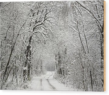 Wood Print featuring the photograph Winter Scene 2 by Gabriella Weninger - David