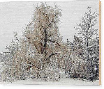 Winter Scene Wood Print by Kathleen Struckle