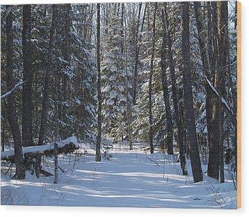 Winter Scene1 Wood Print by Susan Crossman Buscho