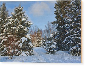 Wood Print featuring the photograph Winter Scenery by Teresa Zieba