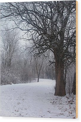 Wood Print featuring the photograph Winter Serenity by Teresa Schomig
