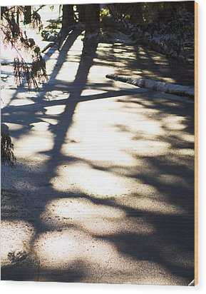 Wood Print featuring the photograph Winter Shadows by Yulia Kazansky