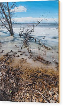Winter Shore At Barr Lake_2 Wood Print by Tom Potter