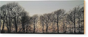 Winter Skyline Wood Print