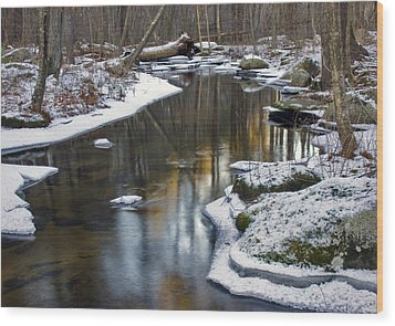 Winter Snake Meadow Brook Wood Print