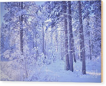 Winter Solace Wood Print by Tara Turner