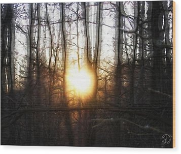 Winter Solstice Wood Print by Gun Legler