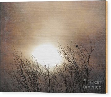 Winter Solstice Wood Print by Roselynne Broussard