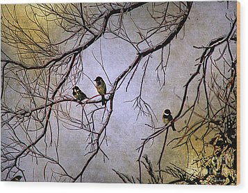 Winter Sparrow Dawn Wood Print by Barbara Chichester