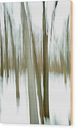 Wood Print featuring the photograph Winter by Steven Huszar