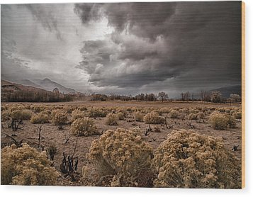 Winter Storm Wood Print by Cat Connor
