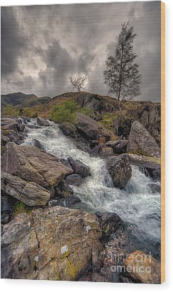 Winter Stream Wood Print by Adrian Evans