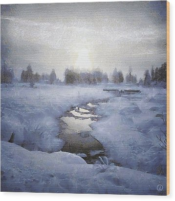 Winter Stream Wood Print by Gun Legler