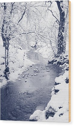 Wood Print featuring the photograph Winter Stream by Liz Leyden