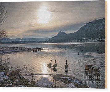 Winter Sugarloaf With Geese Wood Print