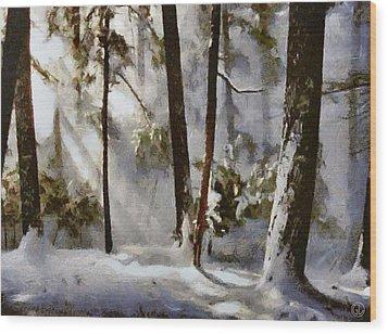 Winter Sun Wood Print by Gun Legler