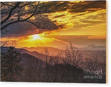 Winter Sun Wood Print by Mark East