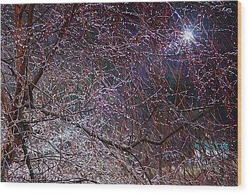 Winter Sun Wood Print by Tom Culver