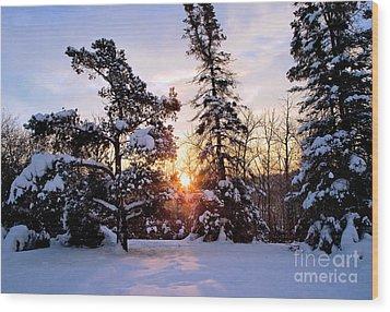 Winter Sunrise Wood Print by Terry Elniski