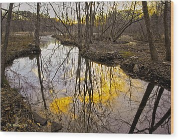 Wood Print featuring the photograph Winter Sunset At Williston Mill by Brian Wallace