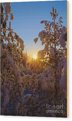 Winter Sunset Behind The Trees Wood Print