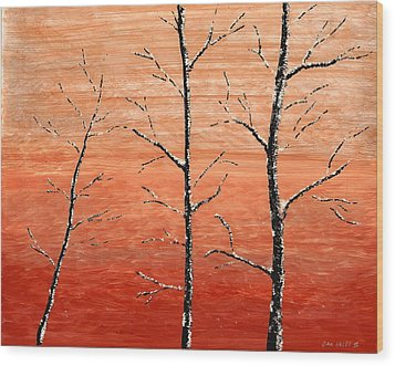 Winter Sunset Wood Print by Dan Haley