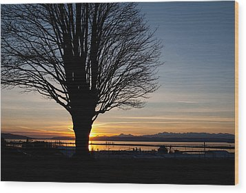 Wood Print featuring the photograph Winter Sunset by Erin Kohlenberg