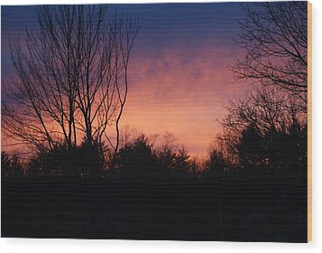 Winter Sunset Wood Print by Lois Lepisto