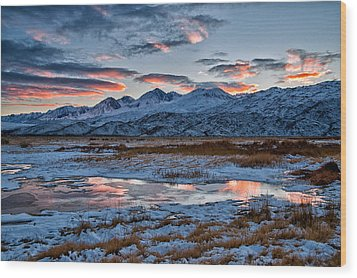 Winter Sunset Reflection Wood Print by Cat Connor