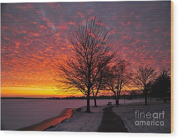 Wood Print featuring the photograph Winter Sunset by Terri Gostola