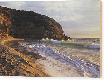 Winter Swells Strands Beach Wood Print