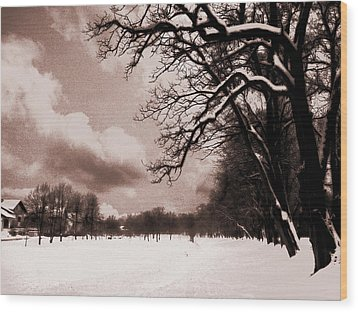 Wood Print featuring the photograph Winter Tale by Nina Ficur Feenan