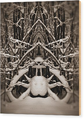 Wood Print featuring the photograph Winter Temple by WB Johnston