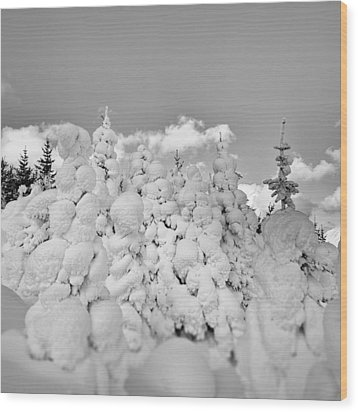 Winter Time Wood Print by Frodi Brinks