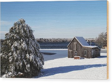 Wood Print featuring the photograph Winter Time by Gina Cormier